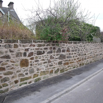 Lime Pointing (2)