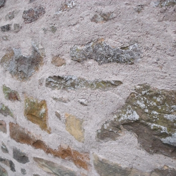 Lime Pointing (3)